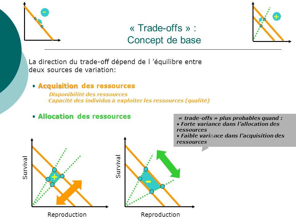 « Trade-offs » : Concept de base La direction du trade-off dépend de l équilibre entre deux sources de variation: Acquisition Acquisition des ressourc