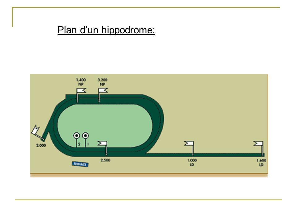Plan dun hippodrome: