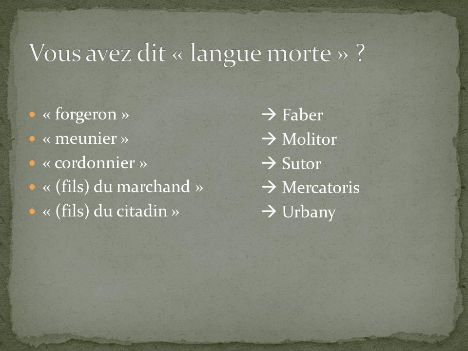 « forgeron » « meunier » « cordonnier » « (fils) du marchand » « (fils) du citadin » Faber Molitor Sutor Mercatoris Urbany