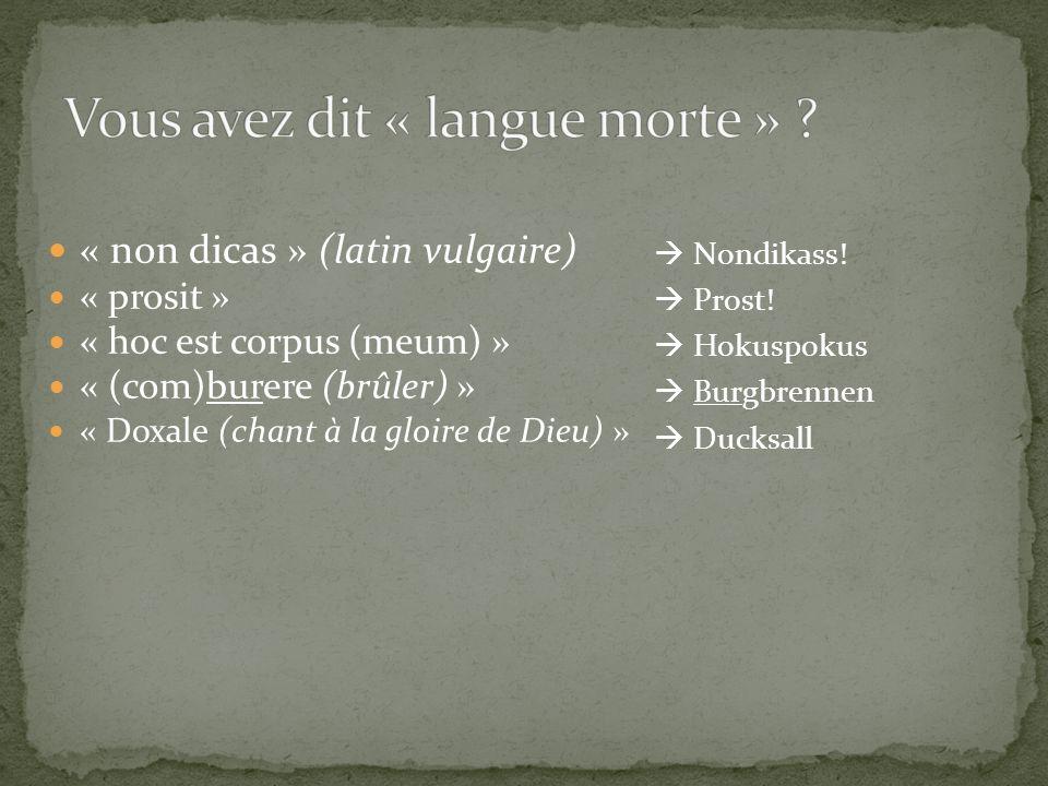« non dicas » (latin vulgaire) « prosit » « hoc est corpus (meum) » « (com)burere (brûler) » « Doxale (chant à la gloire de Dieu) » Nondikass! Prost!