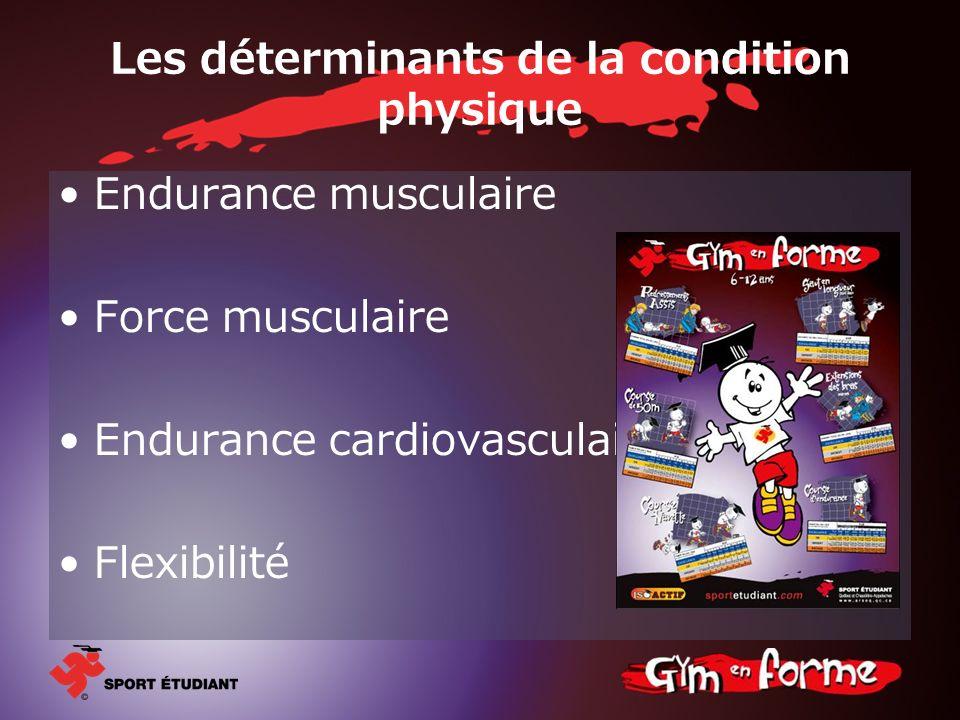 Les déterminants de la condition physique Endurance musculaire Force musculaire Endurance cardiovasculaire Flexibilité
