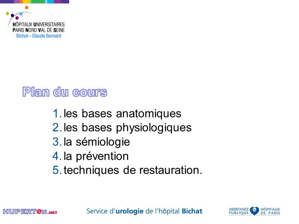 1.les bases anatomiques 2.les bases physiologiques 3.la sémiologie 4.la prévention 5.techniques de restauration.