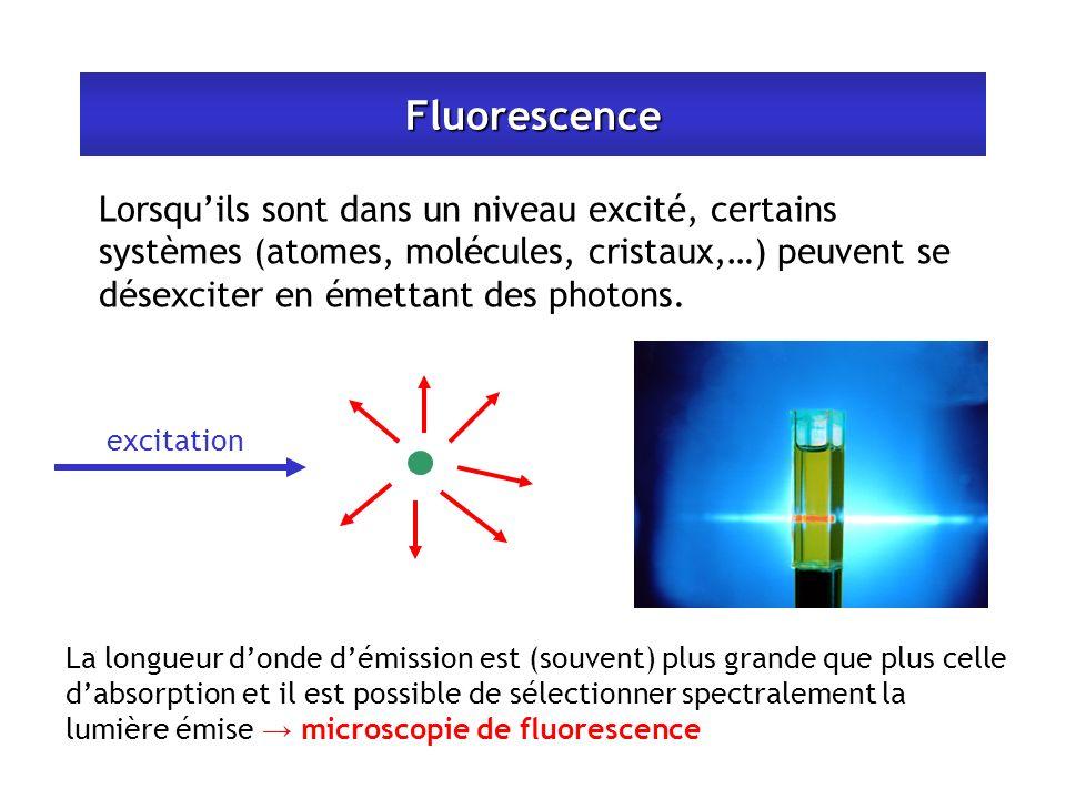 Fluorescence Lorsquils sont dans un niveau excité, certains systèmes (atomes, molécules, cristaux,…) peuvent se désexciter en émettant des photons. ex