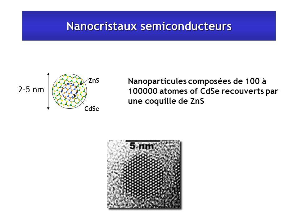 Nanocristaux semiconducteurs Nanoparticules composées de 100 à 100000 atomes of CdSe recouverts par une coquille de ZnS 2-5 nm