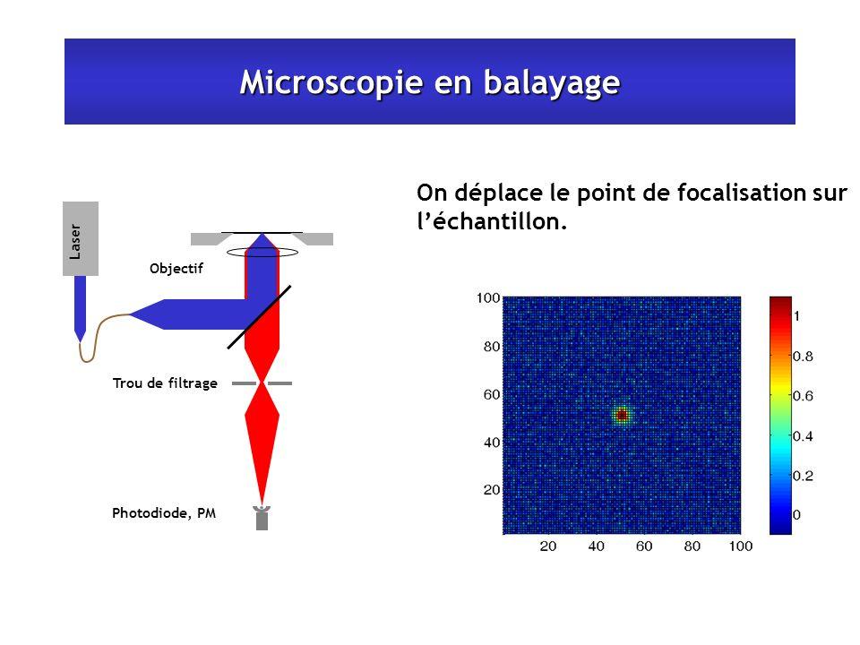 Microscopie en balayage Laser Photodiode, PM Trou de filtrage Objectif On déplace le point de focalisation sur léchantillon.