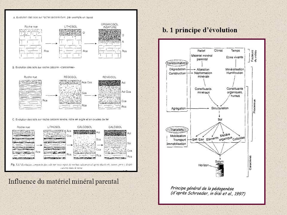b. 1 principe dévolution Influence du matériel minéral parental