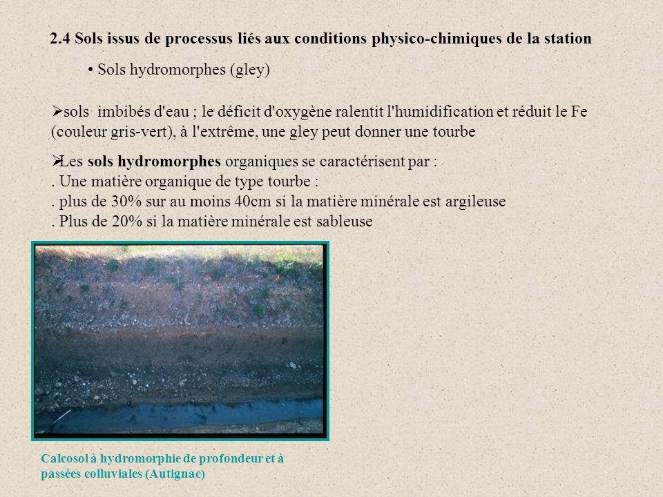2.4 Sols issus de processus liés aux conditions physico-chimiques de la station sols imbibés d'eau ; le déficit d'oxygène ralentit l'humidification et