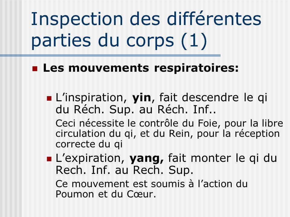 Inspection des différentes parties du corps (1) Les mouvements respiratoires: Linspiration, yin, fait descendre le qi du Réch. Sup. au Réch. Inf.. Cec
