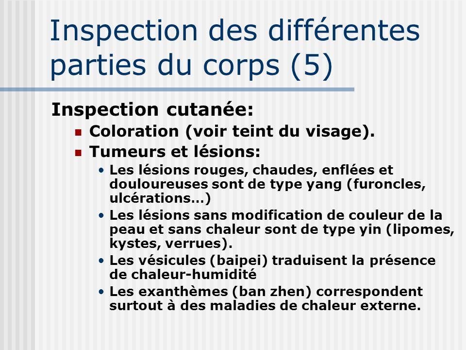 Inspection des différentes parties du corps (5) Inspection cutanée: Coloration (voir teint du visage). Tumeurs et lésions: Les lésions rouges, chaudes