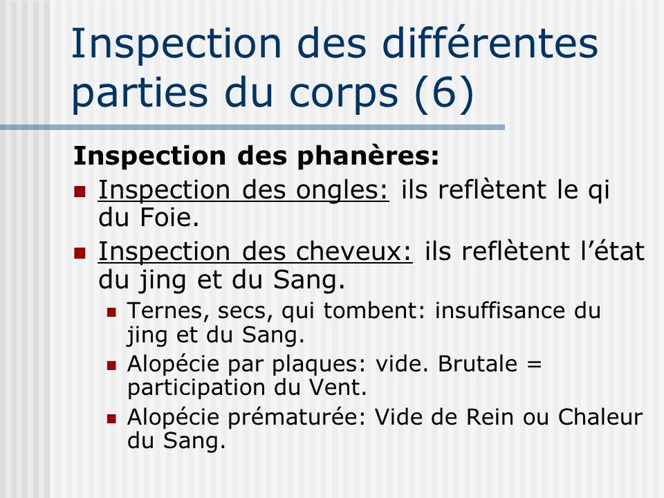 Inspection des différentes parties du corps (6) Inspection des phanères: Inspection des ongles: ils reflètent le qi du Foie. Inspection des cheveux: i