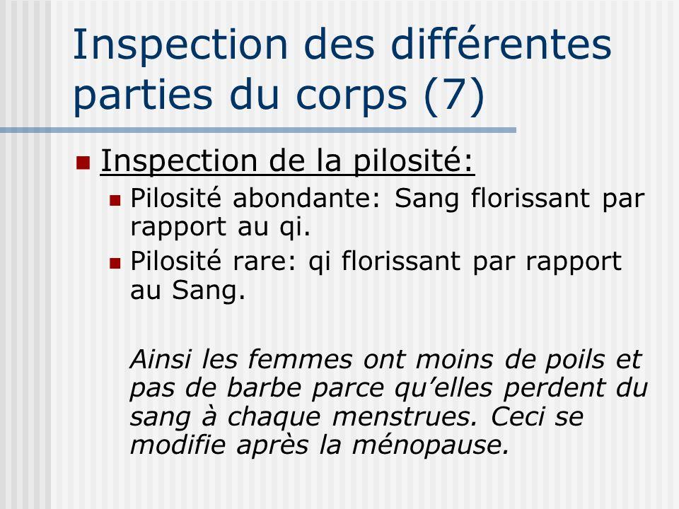 Inspection des différentes parties du corps (7) Inspection de la pilosité: Pilosité abondante: Sang florissant par rapport au qi. Pilosité rare: qi fl