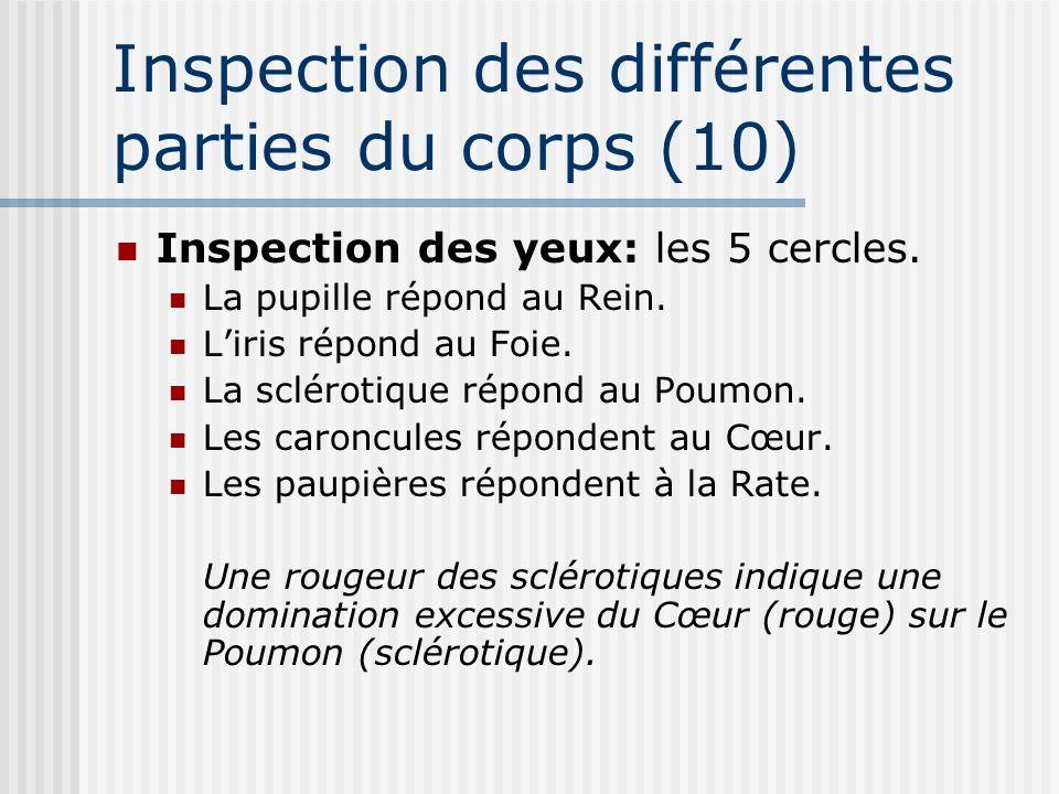 Inspection des différentes parties du corps (10) Inspection des yeux: les 5 cercles. La pupille répond au Rein. Liris répond au Foie. La sclérotique r
