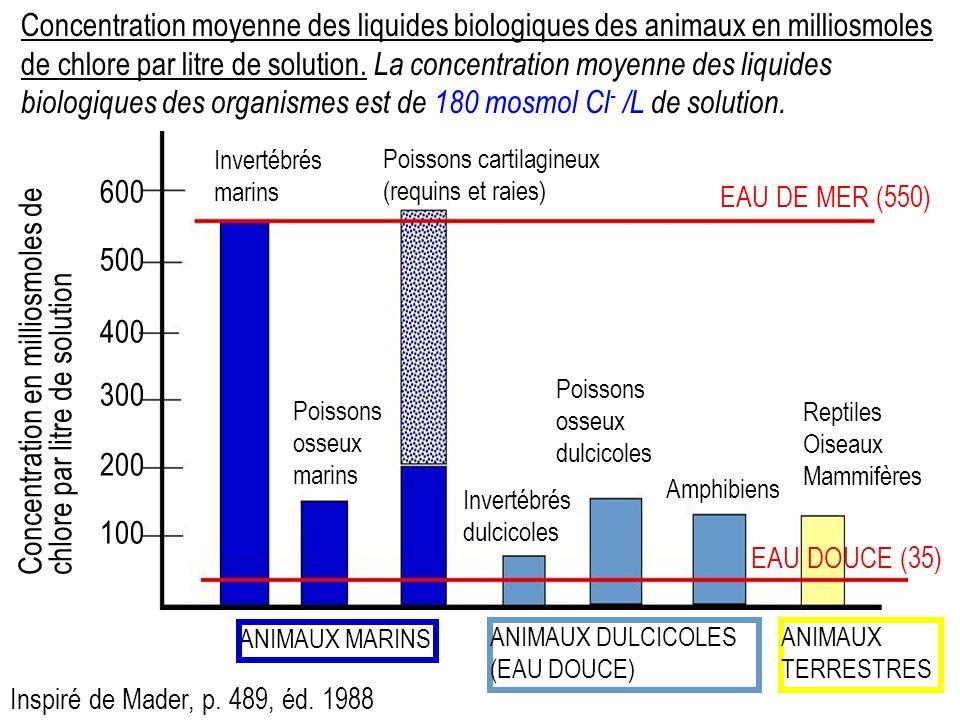Concentration moyenne des liquides biologiques des animaux en milliosmoles de chlore par litre de solution.