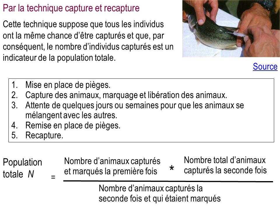 1.Mise en place de pièges.2.Capture des animaux, marquage et libération des animaux.