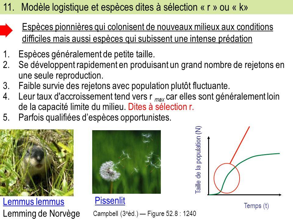 11.Modèle logistique et espèces dites à sélection « r » ou « k» 1.Espèces généralement de petite taille.