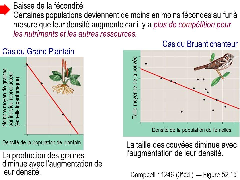 Campbell : 1246 (3 e éd.) Figure 52.15 La production des graines diminue avec laugmentation de leur densité.