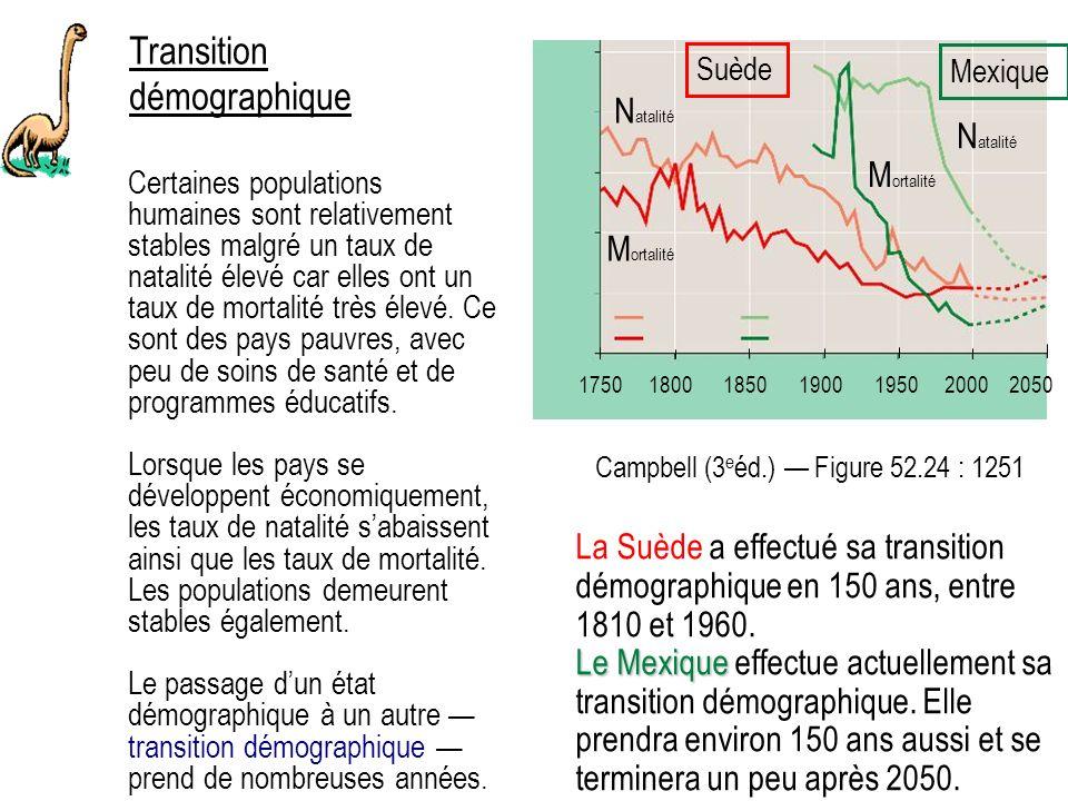 Transition démographique Certaines populations humaines sont relativement stables malgré un taux de natalité élevé car elles ont un taux de mortalité très élevé.