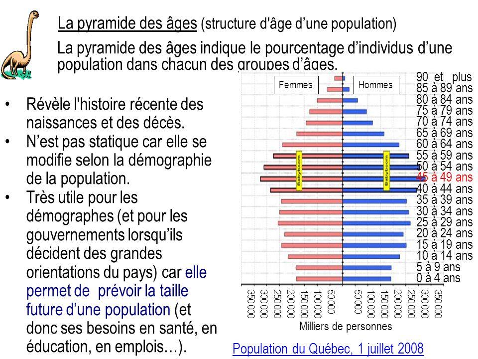 La pyramide des âges (structure d âge dune population) La pyramide des âges indique le pourcentage dindividus dune population dans chacun des groupes dâges.
