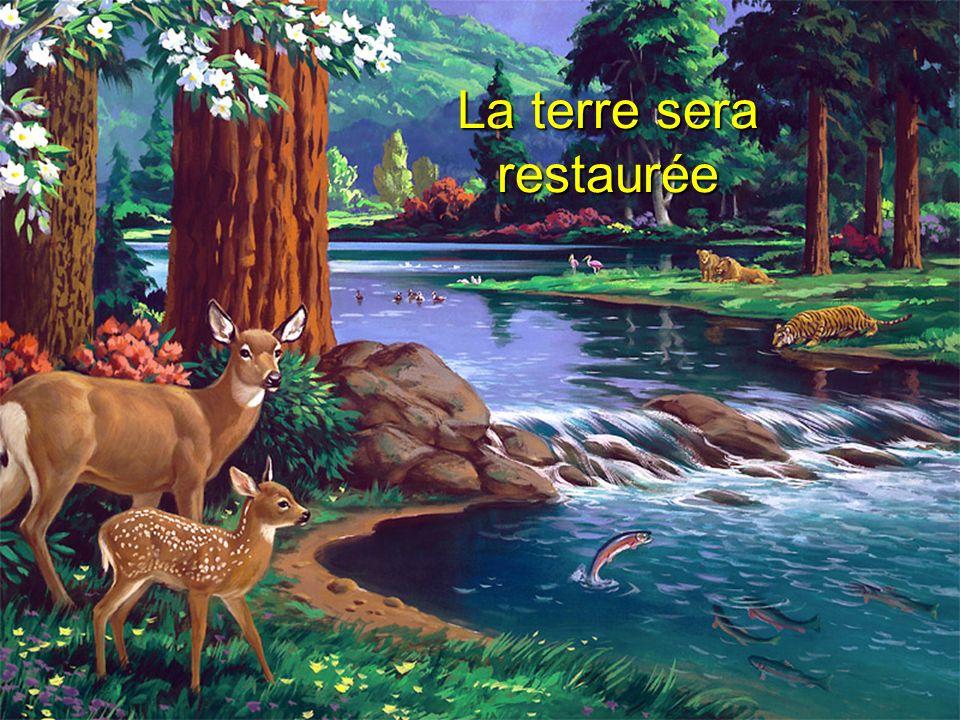 La terre sera restaurée
