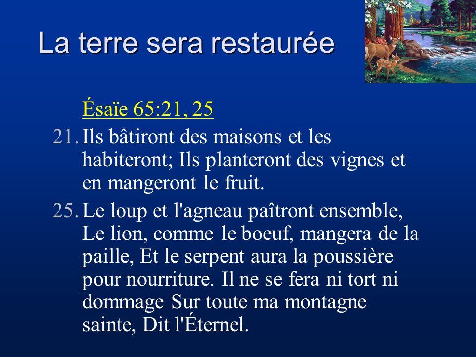 La terre sera restaurée Ésaïe 65:21, 25 21.Ils bâtiront des maisons et les habiteront; Ils planteront des vignes et en mangeront le fruit. 25.Le loup
