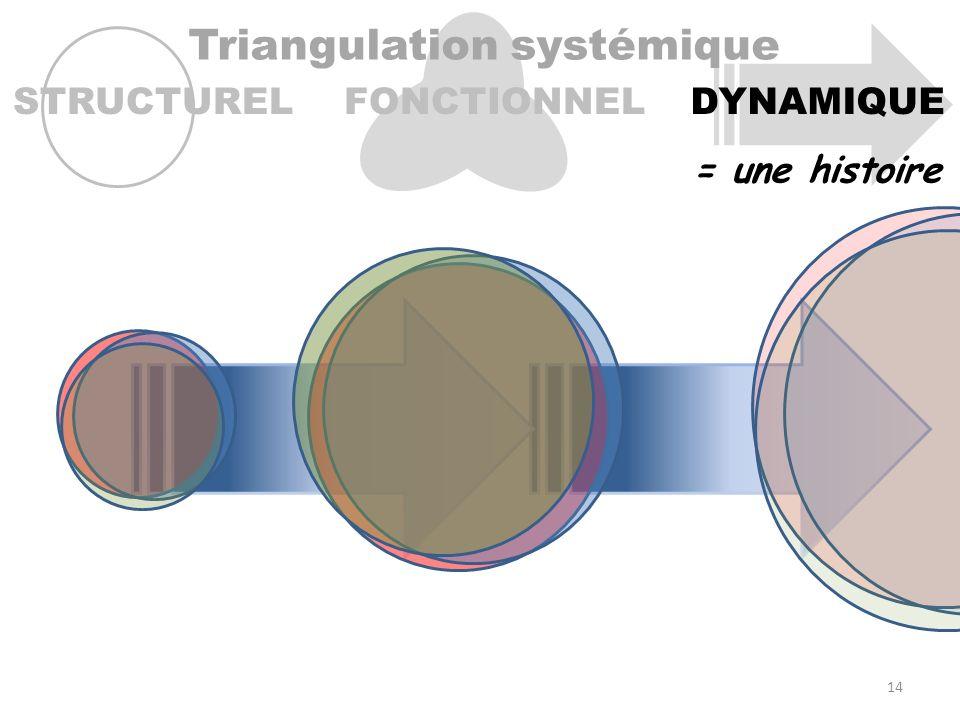 Triangulation systémique STRUCTURELFONCTIONNELDYNAMIQUE = une histoire 14