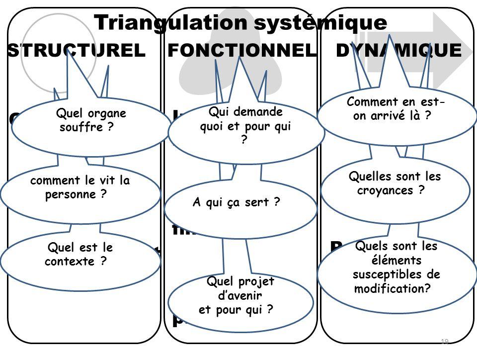 Triangulation systémique DYNAMIQUE Historique Prospectif FONCTIONNELSTRUCTUREL Interactions relationnelles Fonctions et finalités Objectif et projets