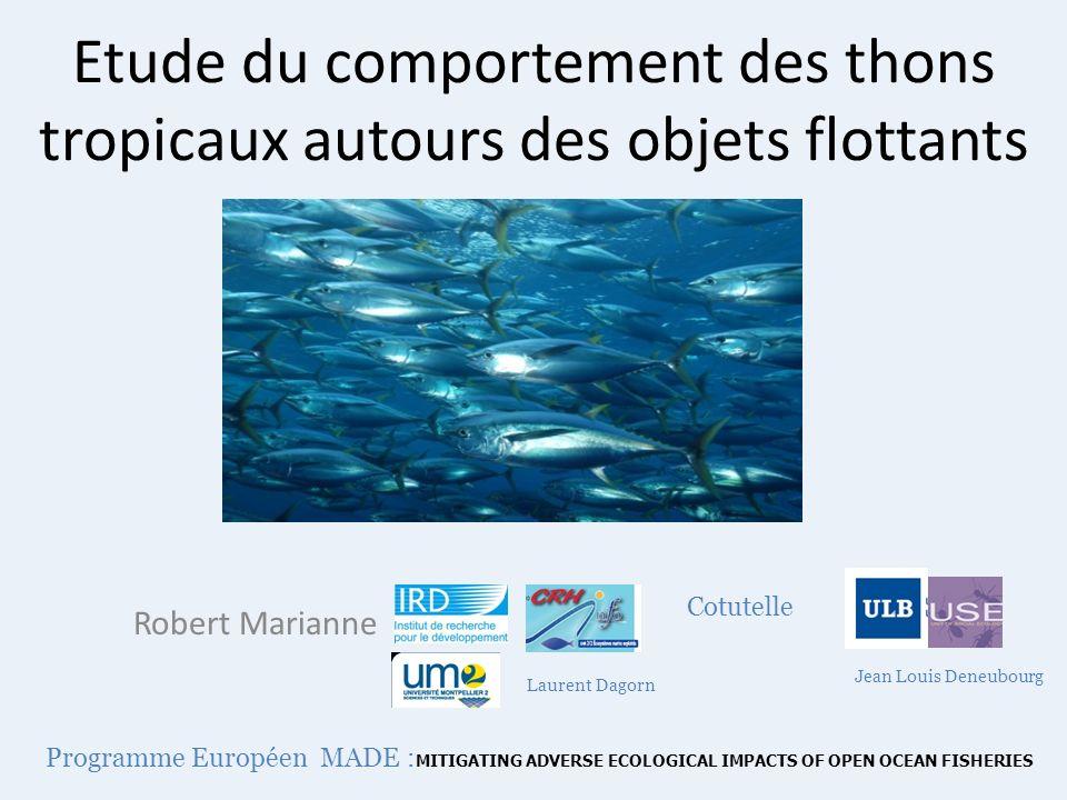 Etude du comportement des thons tropicaux autours des objets flottants Robert Marianne Jean Louis Deneubourg Laurent Dagorn Cotutelle Programme Europé