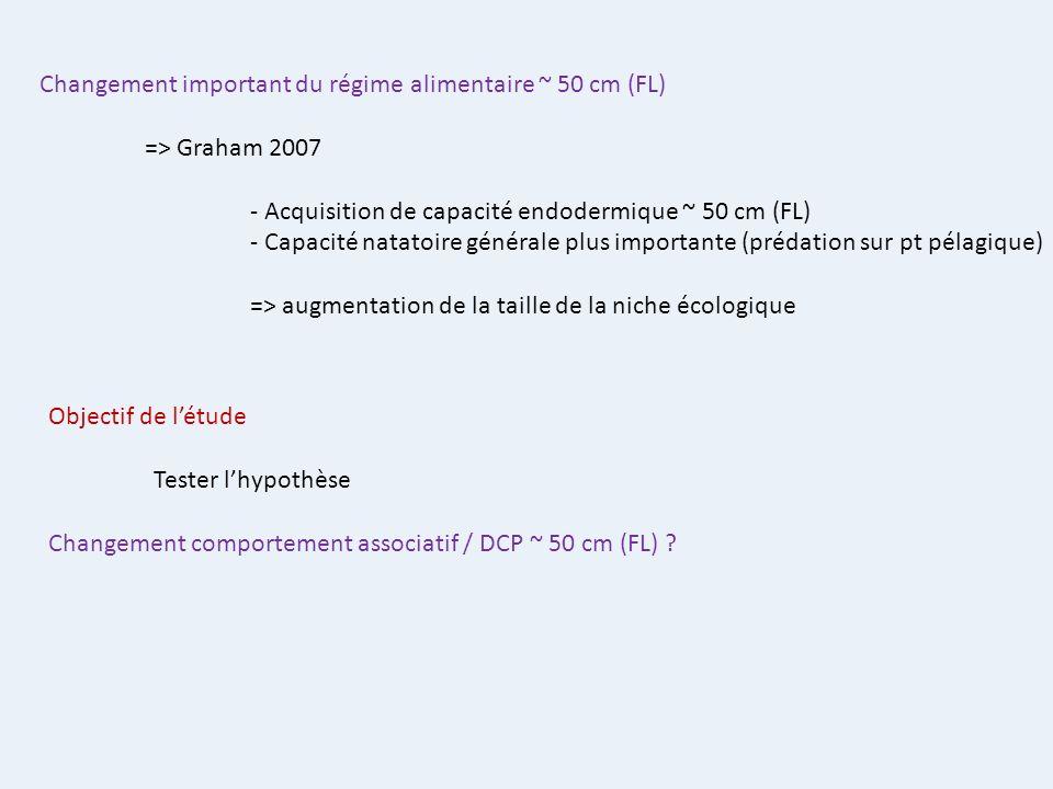 Changement important du régime alimentaire ~ 50 cm (FL) => Graham 2007 - Acquisition de capacité endodermique ~ 50 cm (FL) - Capacité natatoire généra