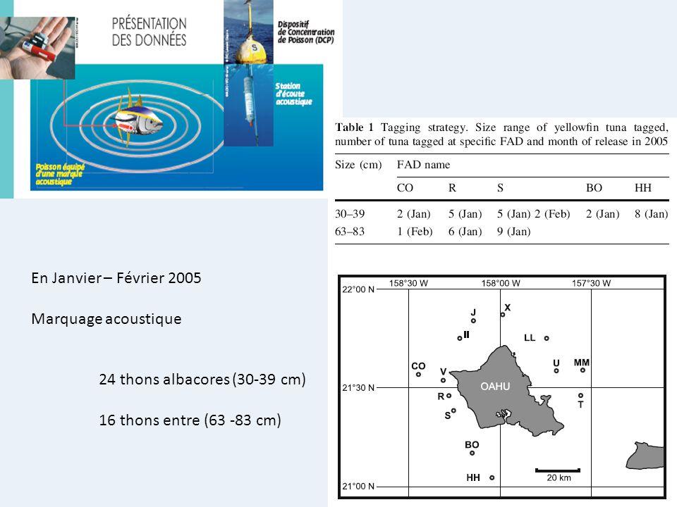 En Janvier – Février 2005 Marquage acoustique 24 thons albacores (30-39 cm) 16 thons entre (63 -83 cm)