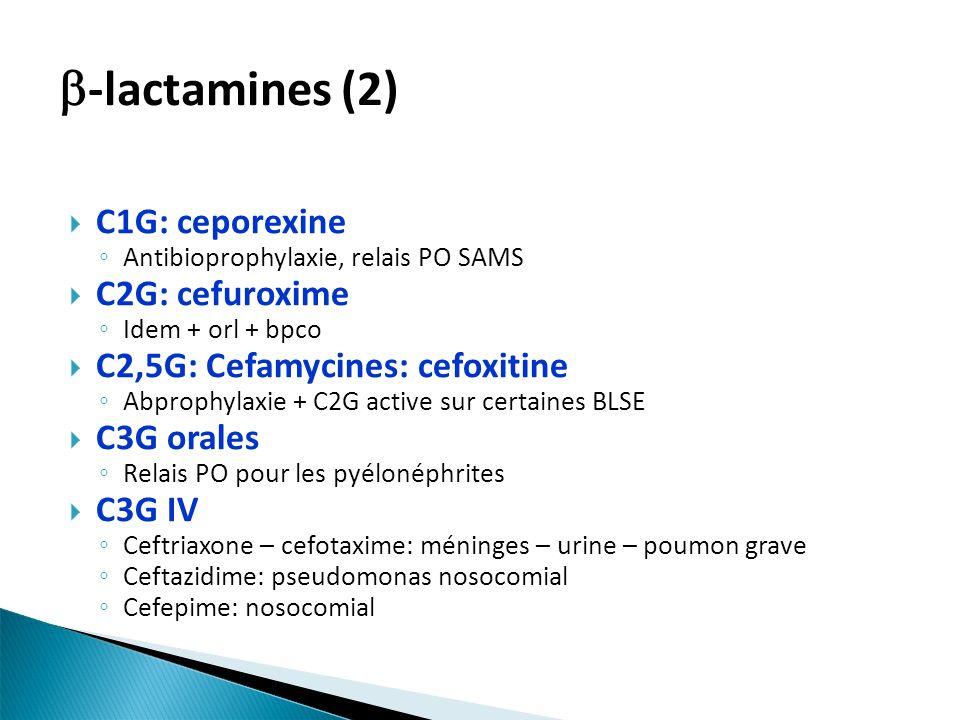 C1G: ceporexine Antibioprophylaxie, relais PO SAMS C2G: cefuroxime Idem + orl + bpco C2,5G: Cefamycines: cefoxitine Abprophylaxie + C2G active sur certaines BLSE C3G orales Relais PO pour les pyélonéphrites C3G IV Ceftriaxone – cefotaxime: méninges – urine – poumon grave Ceftazidime: pseudomonas nosocomial Cefepime: nosocomial -lactamines (2)