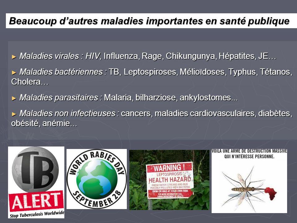 Maladies virales : HIV, Influenza, Rage, Chikungunya, Hépatites, JE… Maladies virales : HIV, Influenza, Rage, Chikungunya, Hépatites, JE… Maladies bactériennes : TB, Leptospiroses, Mélioïdoses, Typhus, Tétanos, Cholera… Maladies bactériennes : TB, Leptospiroses, Mélioïdoses, Typhus, Tétanos, Cholera… Maladies parasitaires : Malaria, bilharziose, ankylostomes...