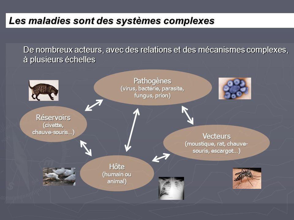 De nombreux acteurs, avec des relations et des mécanismes complexes, à plusieurs échelles Pathogènes (virus, bactérie, parasite, fungus, prion) Hôte (humain ou animal) Vecteurs (moustique, rat, chauve- souris, escargot…) Réservoirs (civette, chauve-souris…) Les maladies sont des systèmes complexes