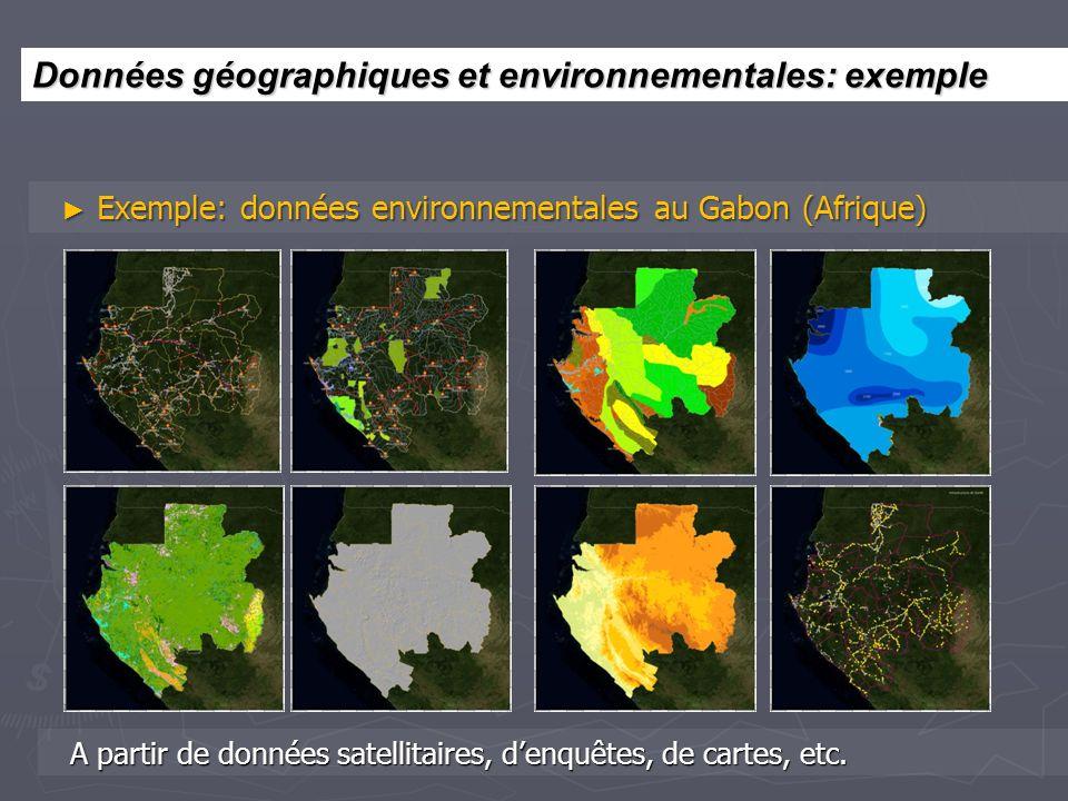 Exemple: données environnementales au Gabon (Afrique) Exemple: données environnementales au Gabon (Afrique) A partir de données satellitaires, denquêt