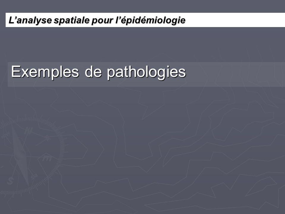 Lanalyse spatiale pour lépidémiologie Exemples de pathologies