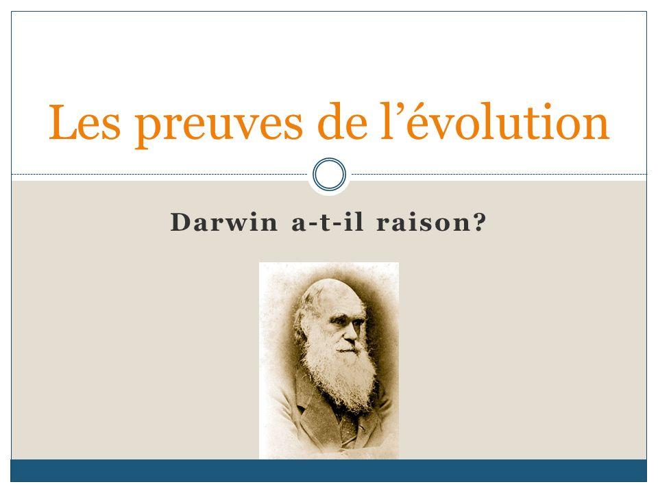 Darwin a-t-il raison? Les preuves de lévolution