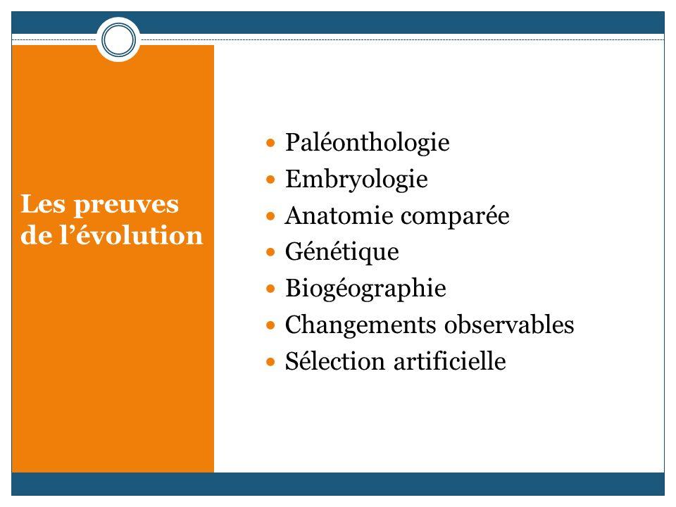 Paléonthologie Embryologie Anatomie comparée Génétique Biogéographie Changements observables Sélection artificielle