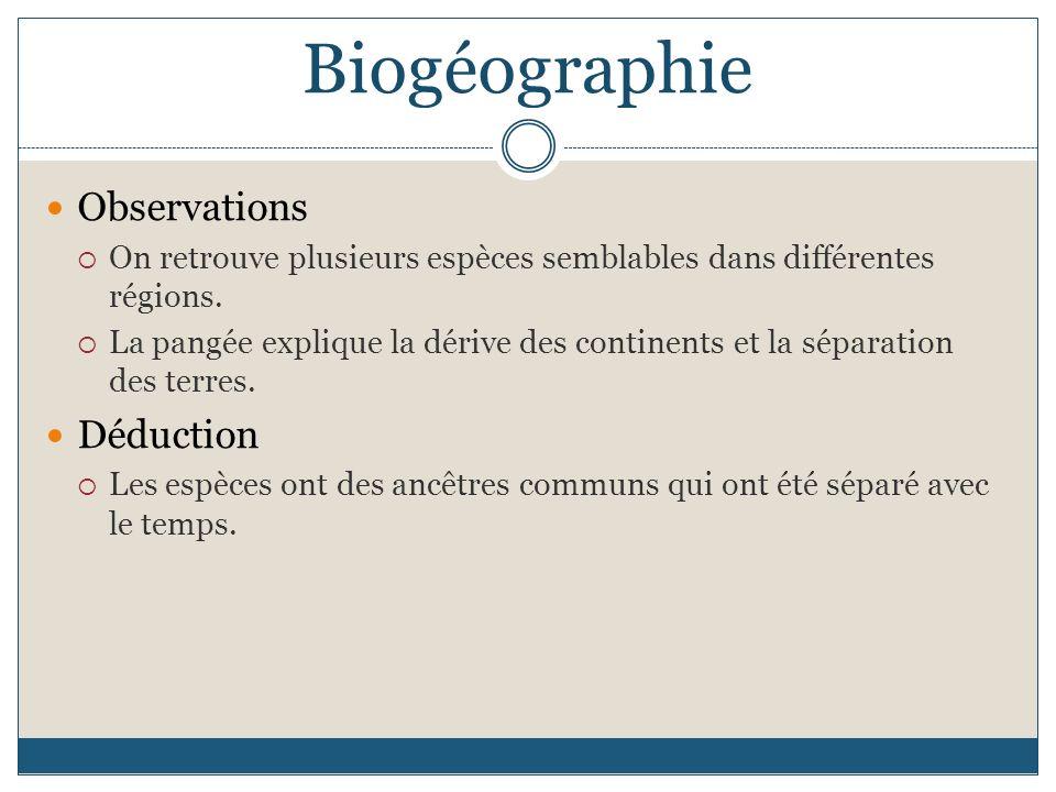 Biogéographie Observations On retrouve plusieurs espèces semblables dans différentes régions. La pangée explique la dérive des continents et la sépara