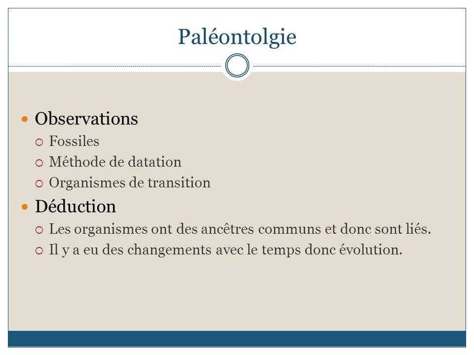 Paléontolgie Observations Fossiles Méthode de datation Organismes de transition Déduction Les organismes ont des ancêtres communs et donc sont liés. I
