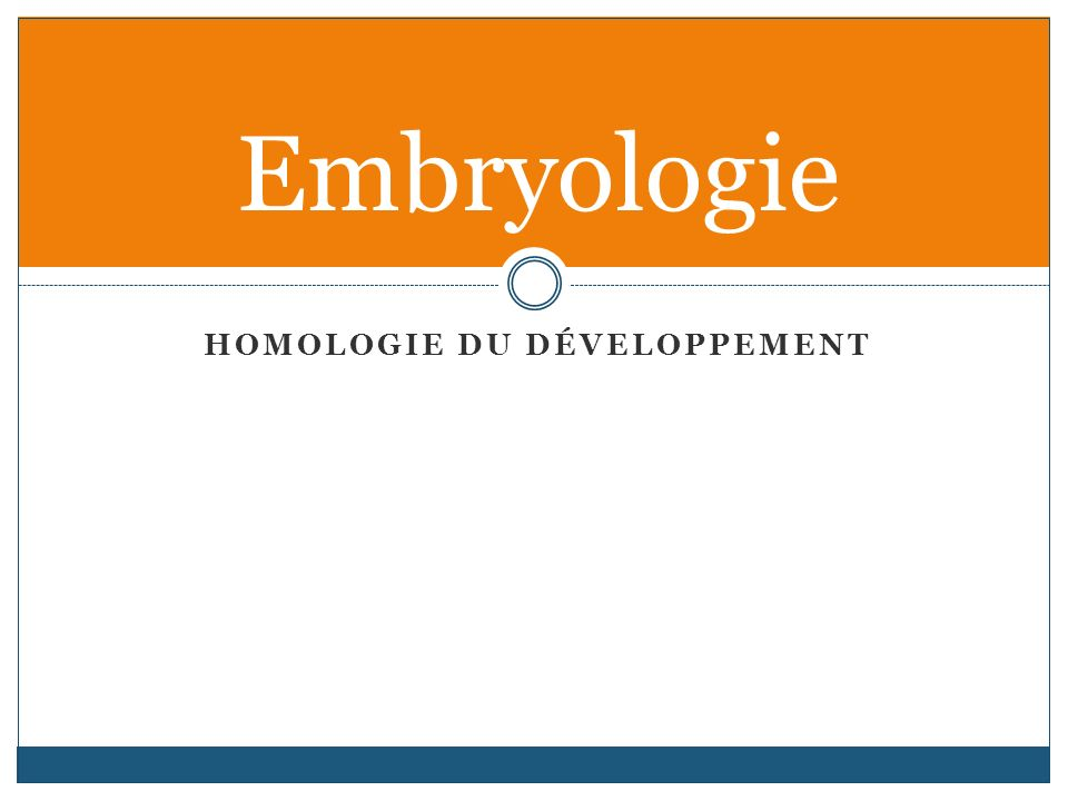 HOMOLOGIE DU DÉVELOPPEMENT Embryologie