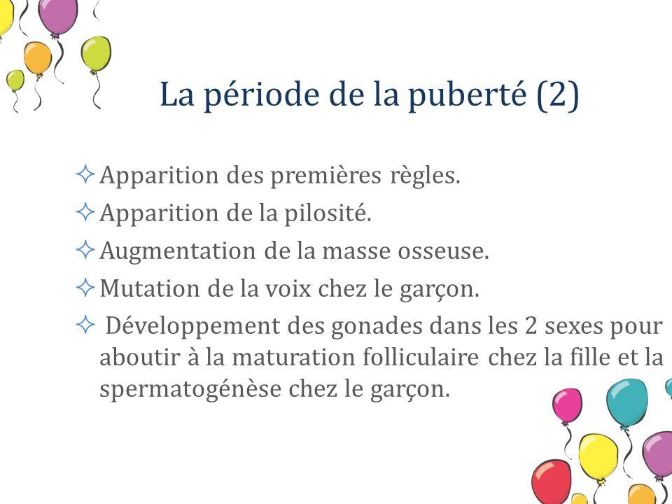 La période de la puberté (2) Apparition des premières règles. Apparition de la pilosité. Augmentation de la masse osseuse. Mutation de la voix chez le