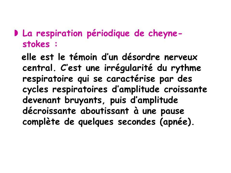 La respiration périodique de cheyne- stokes : elle est le témoin dun désordre nerveux central.