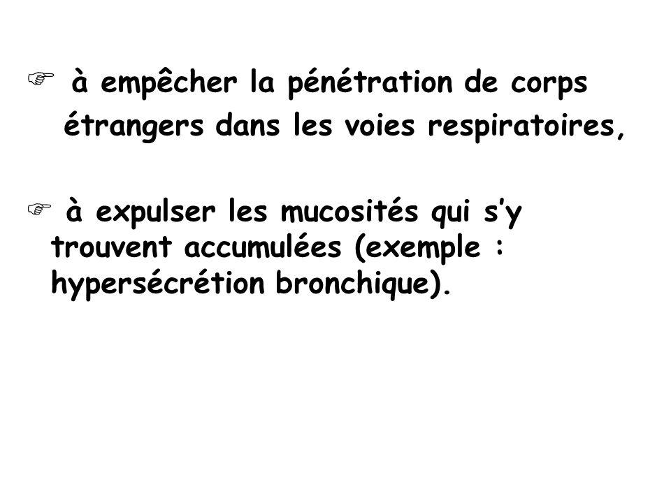 à empêcher la pénétration de corps étrangers dans les voies respiratoires, à expulser les mucosités qui sy trouvent accumulées (exemple : hypersécrétion bronchique).