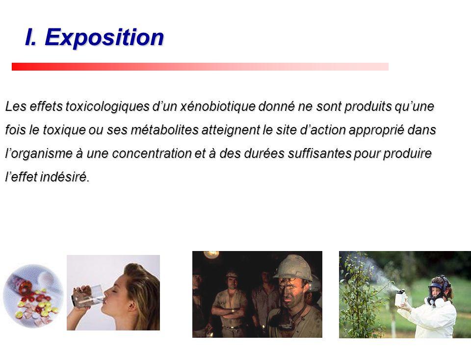 Les effets toxicologiques dun xénobiotique donné ne sont produits quune fois le toxique ou ses métabolites atteignent le site daction approprié dans l