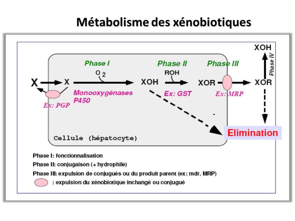 Métabolisme des xénobiotiques Métabolisme des xénobiotiques