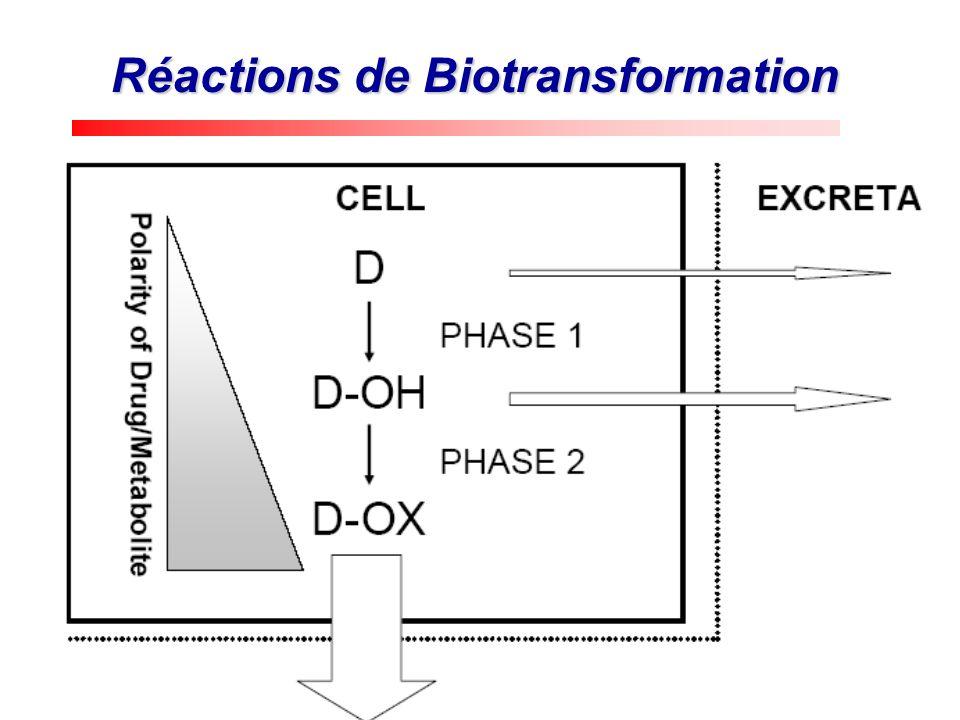 Réactions de Biotransformation