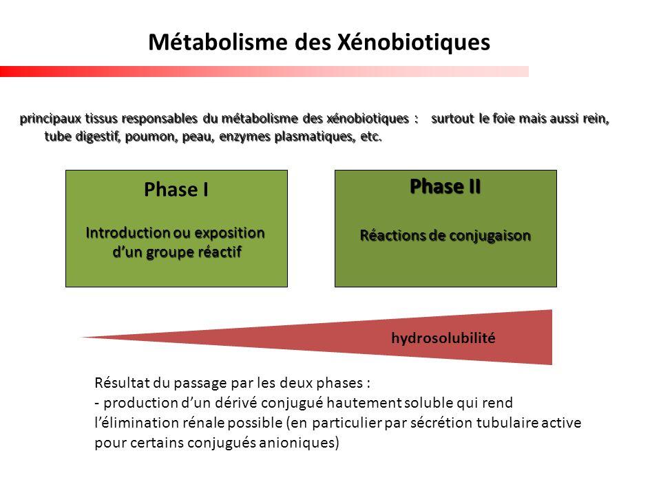Métabolisme des Xénobiotiques principaux tissus responsables du métabolisme des xénobiotiques : surtout le foie mais aussi rein, tube digestif, poumon