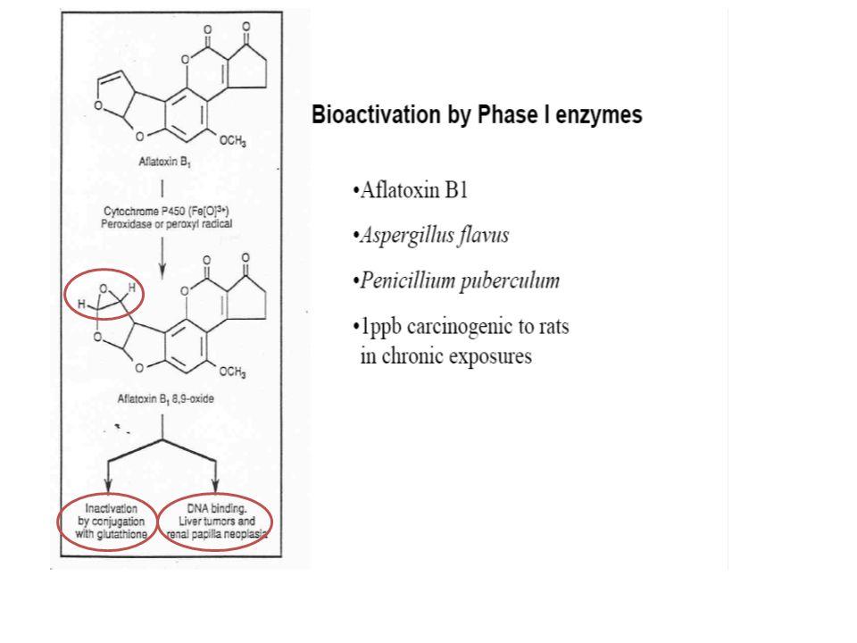 Molécules de conjugaison