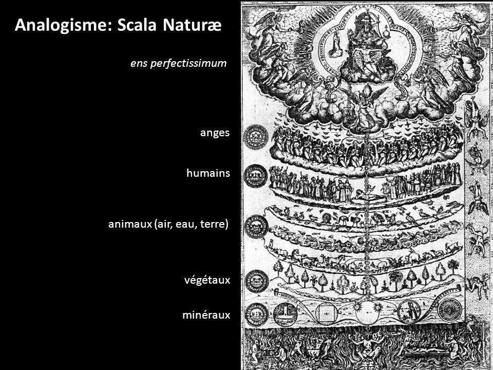 Analogisme: Scala Naturæ anges humains animaux (air, eau, terre) végétaux minéraux ens perfectissimum