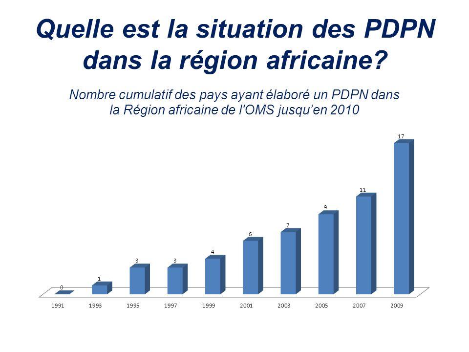 Quelle est la situation des PDPN dans la région africaine?