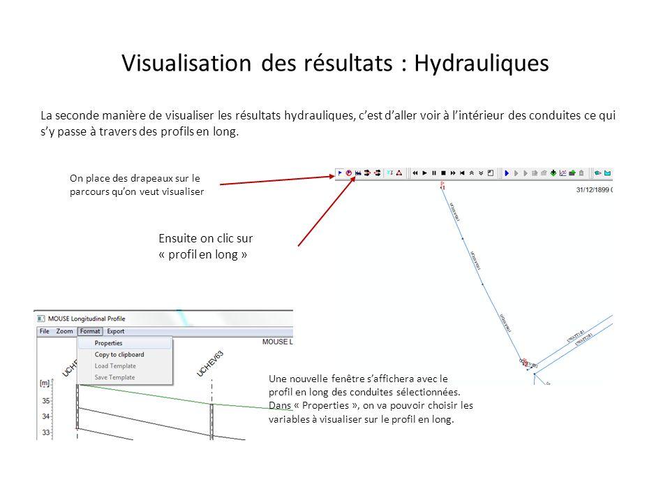 Visualisation des résultats : Hydrauliques La seconde manière de visualiser les résultats hydrauliques, cest daller voir à lintérieur des conduites ce
